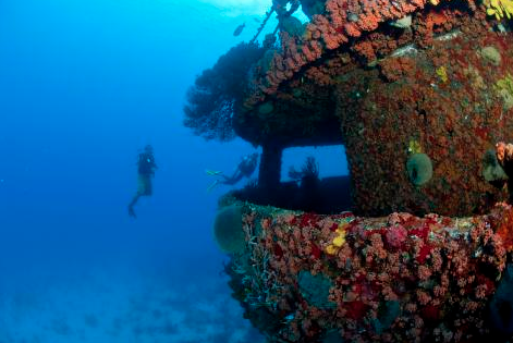 Diving great activity for freelance travel copywriter
