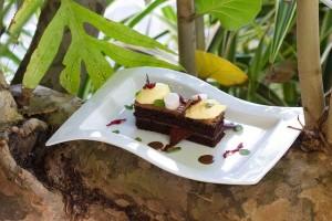 Photo courtesy of the Grenada Chocolate Festival